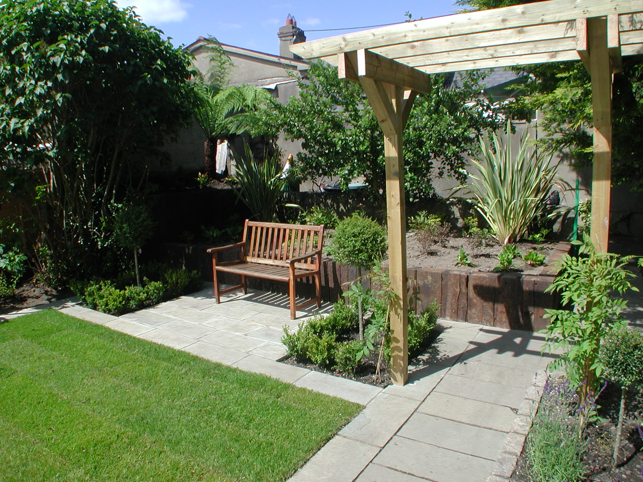 Garden design contract : Buxus and lonicera standards landscaping
