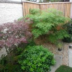 Churchtown Landscaping Garden Design and Plants and Shrubs