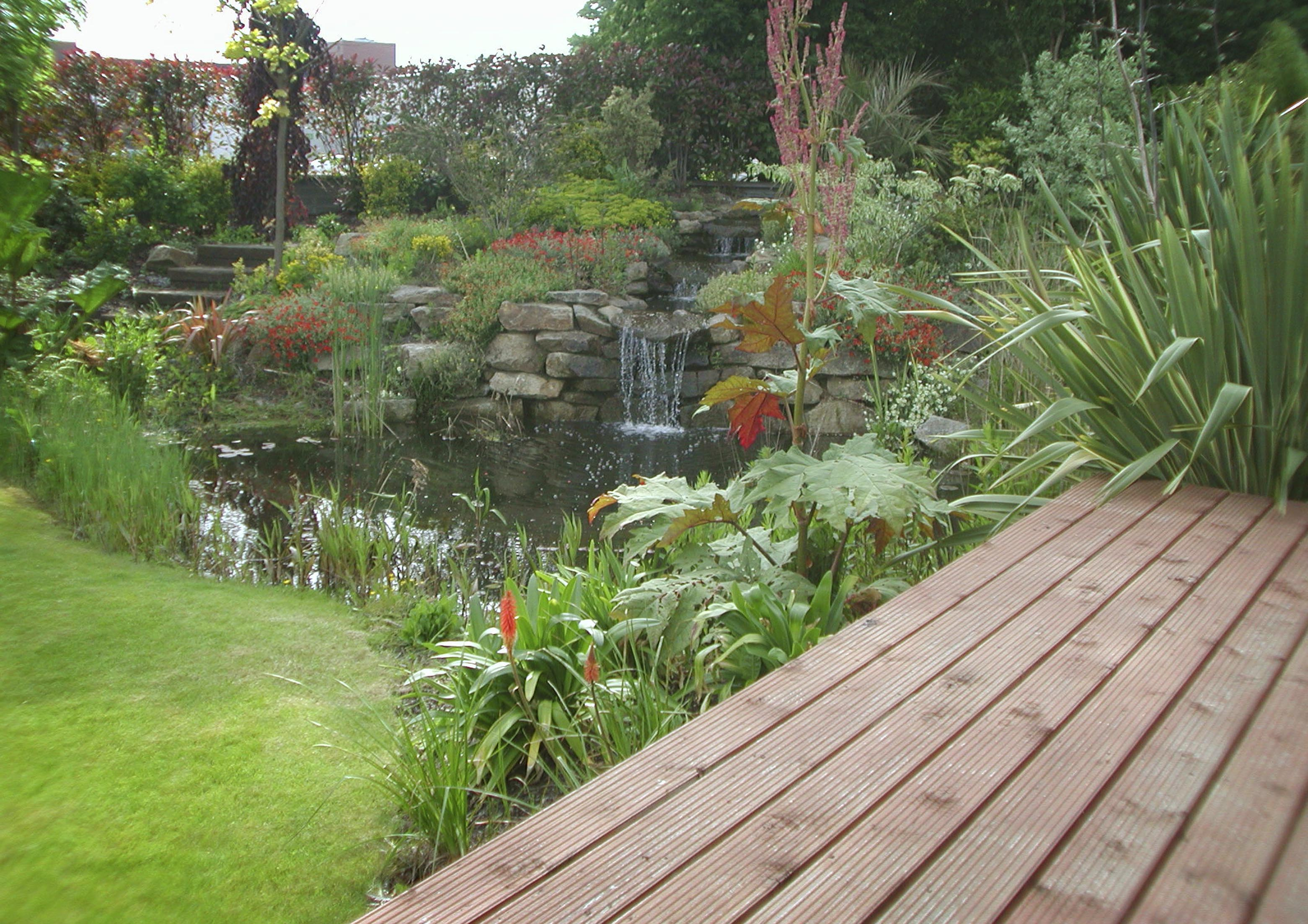 Pond and waterfall for koi carp for Garden pond quotes