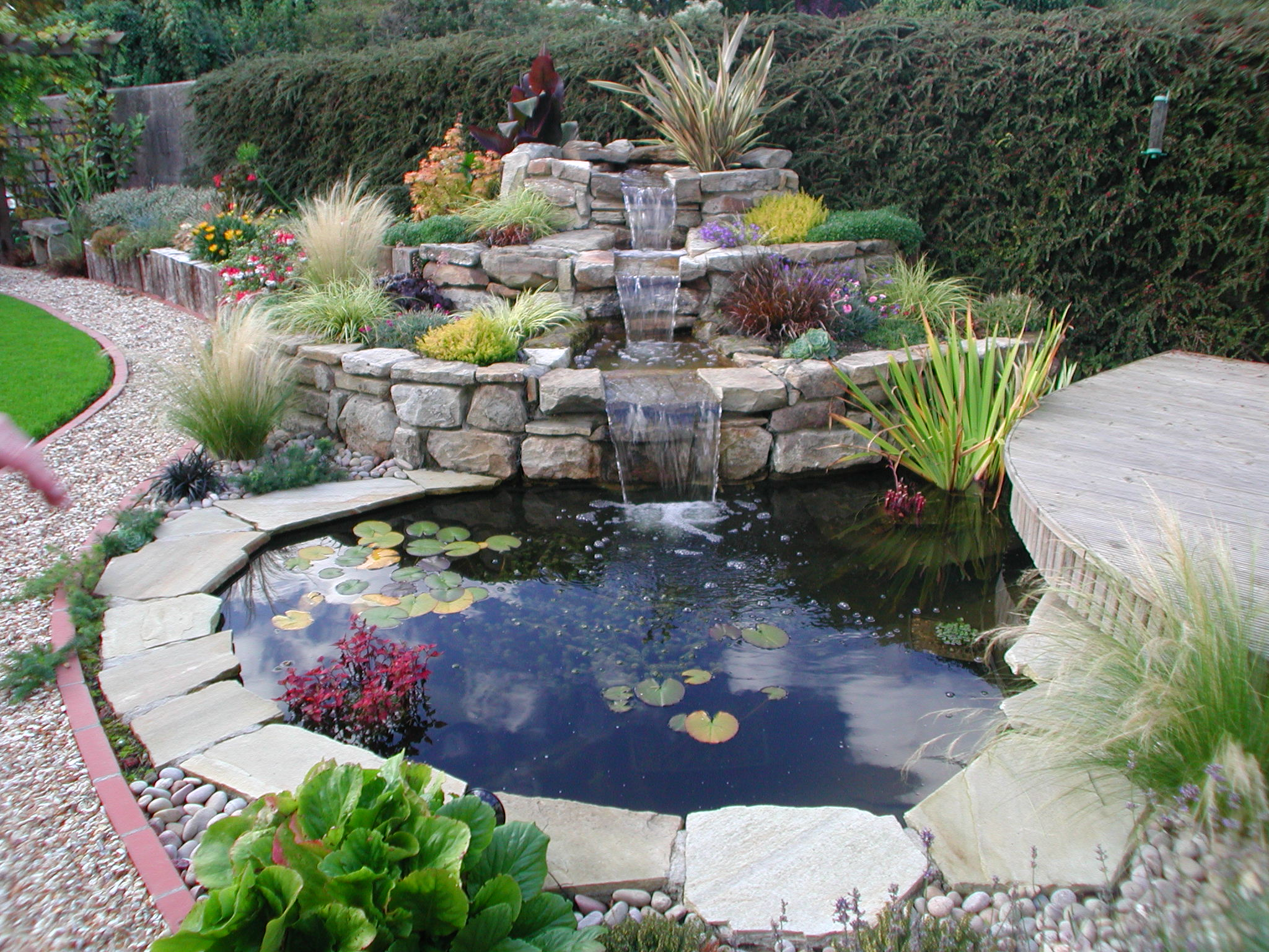 Waterfall and pond ror fish landscaping for Garden design qualifications