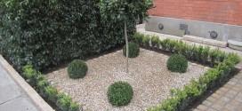 Landscaping Dublin, Design & Build, Sandymount, Co Dublin