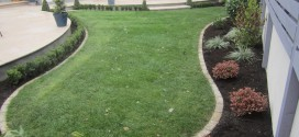 Landscapers Tips on Mulching