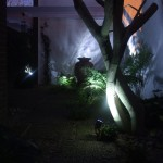 Gardening and Outdoor Lighting Design at Leeson Village, Ireland