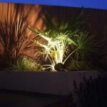 Lighting in Rathfarnham Garden