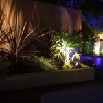 Outdoor Garden Lighting Design in Rathfarnham, Dublin, Ireland