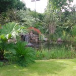 Landscaper Kevin Baumann&#039;s Garden Design in Sandymount