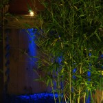 Shankill garden with outdoor garden lighting at night time