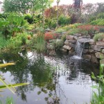 Garden Design with Waterfall
