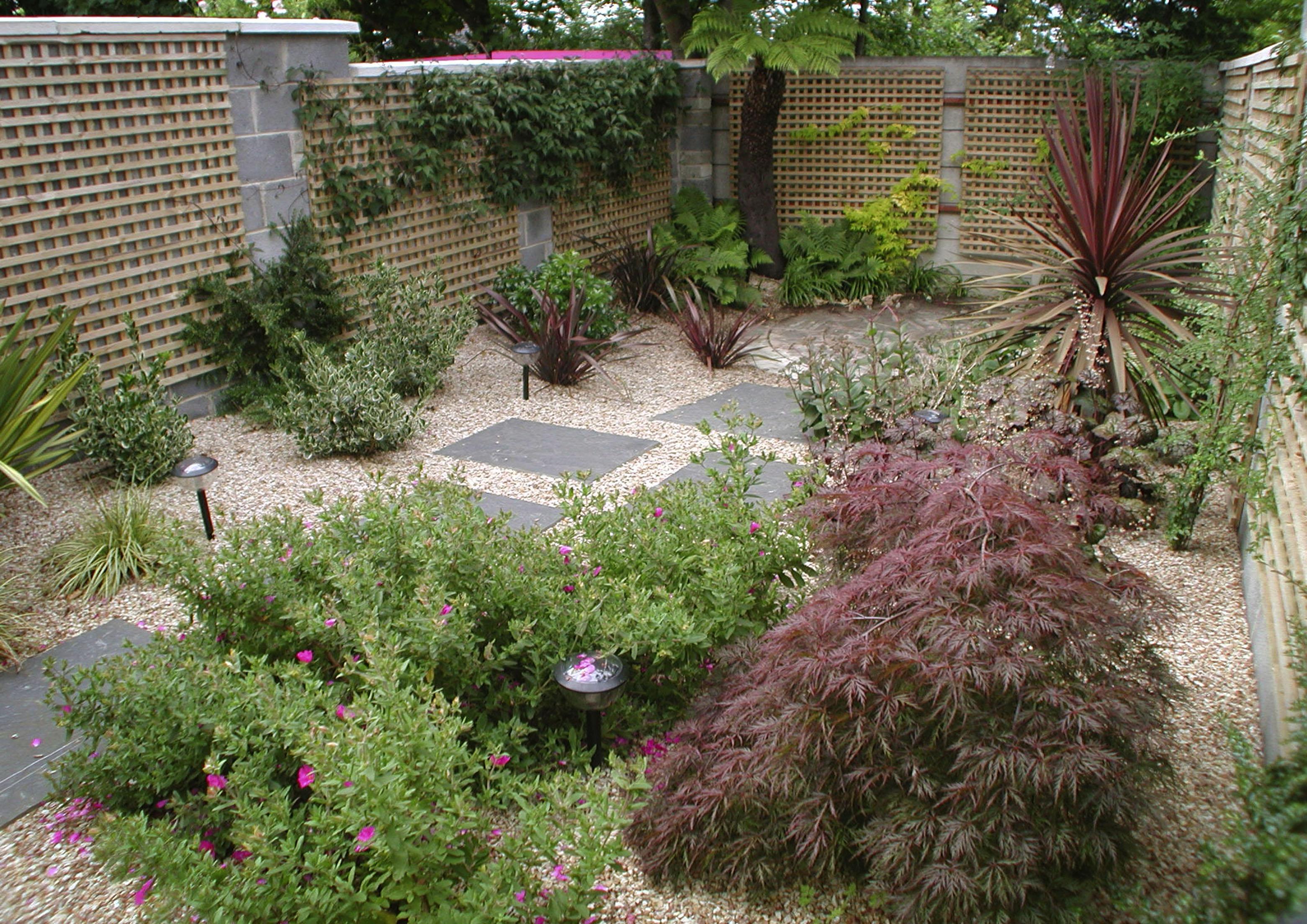 Low maintenance garden design dublin for Garden design dublin