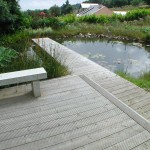 Deck and jetty