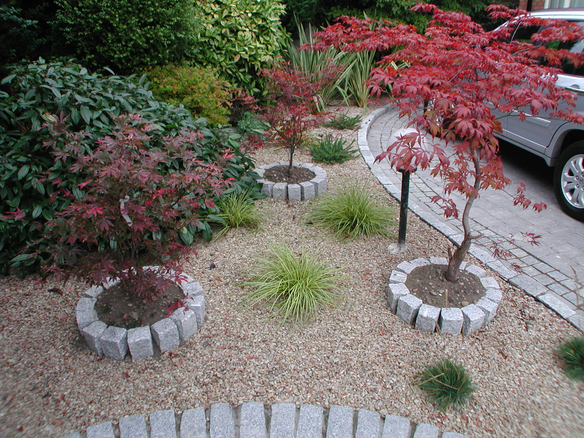 Low maintenance garden design dublin for Simple low maintenance gardens