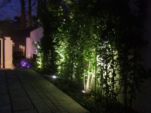 Blackrock Night Time Landscaping and Outdoor Lighting