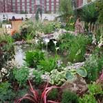 Show garden planting