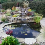Waterfall and pond ror fish