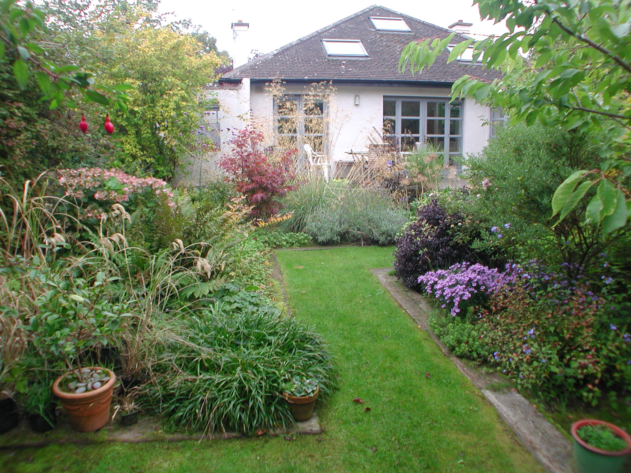 Planting for Garden Designs Dublin, Wicklow - Landscaping.ie