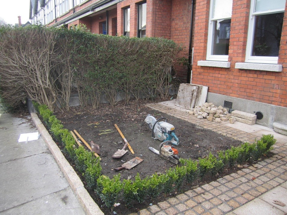 Front before landscaping