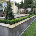 Buxus and Laurel pyramids