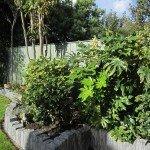 Lush Planting