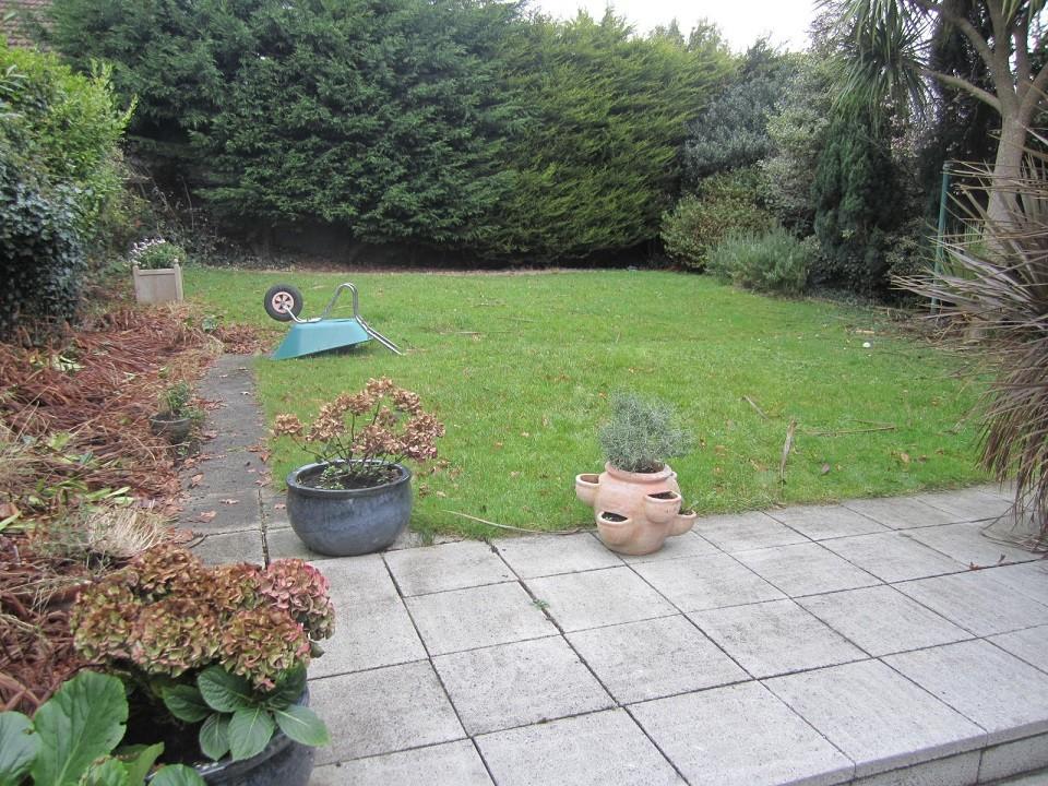 Back garden before