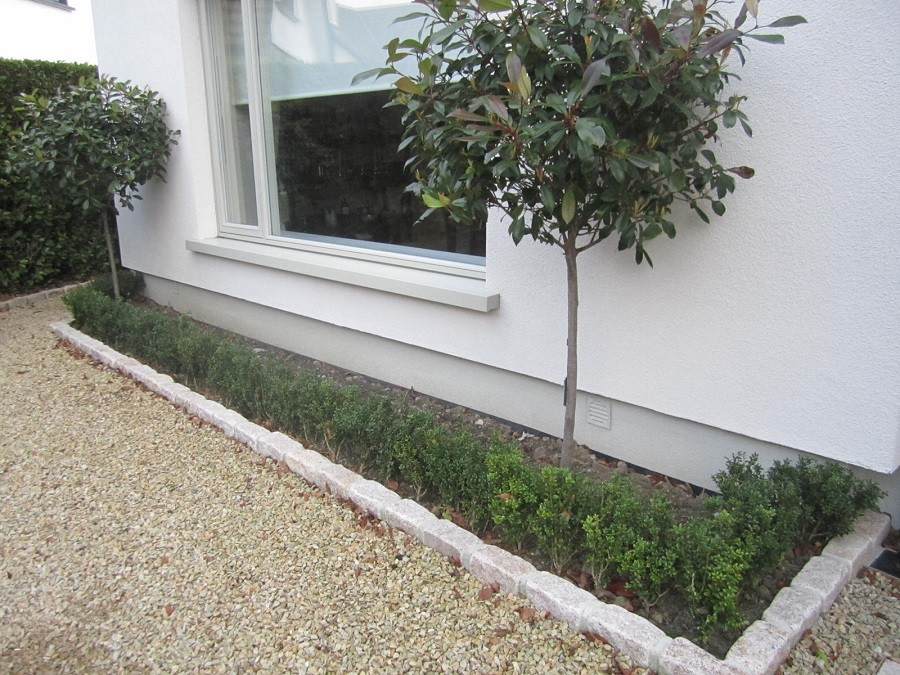 Low maintenance planting to soften house