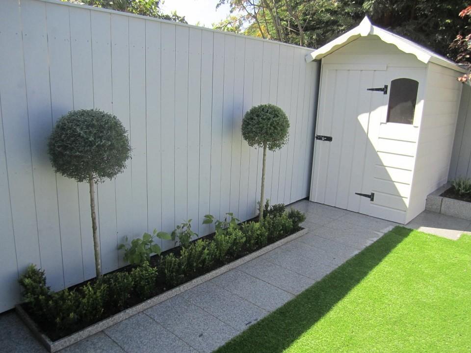 Formal planting including Ligustrum delavaynum, Buxus sempervirens & Hydrangea 'Annabelle