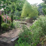 Landscaped Garden by Kevin Baumman of Landscaping.ie