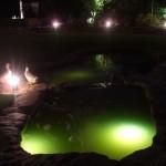 Outdoor Lighting in a Garden Pond in Ireland