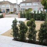Landscaping Project Terenure